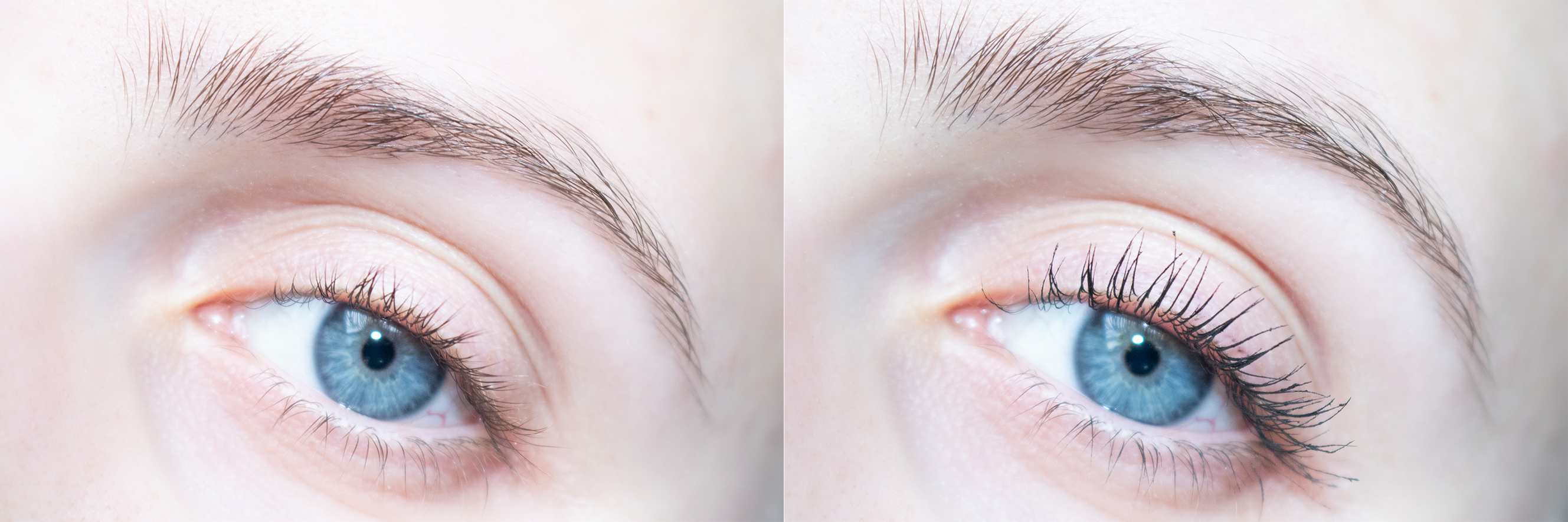 mineralissima review mascara effect