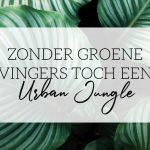 zonder groene vingers urban jungle